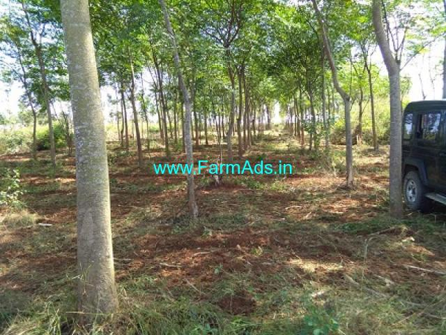 3.5 Acres plain land for sale in Belur, Hassan Highway