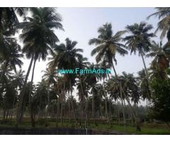 6.5 acre coconuts farm sale at sokkanur main road, Coimbatore