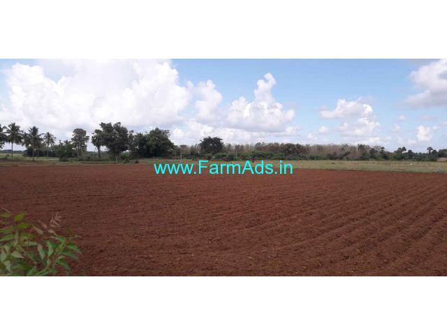 1.73 Acres Punjai land for Sale in Maruthadu village