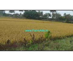 36 Guntas Farm land for sale at Kalale Village, Nanjanagudu.