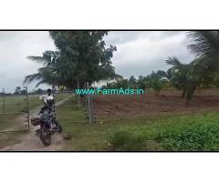 3.16 Acres Farm land for sale at Nerale Village, near Nanjangudu.
