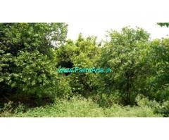 29 Acres farm land for sale in Hiriyur
