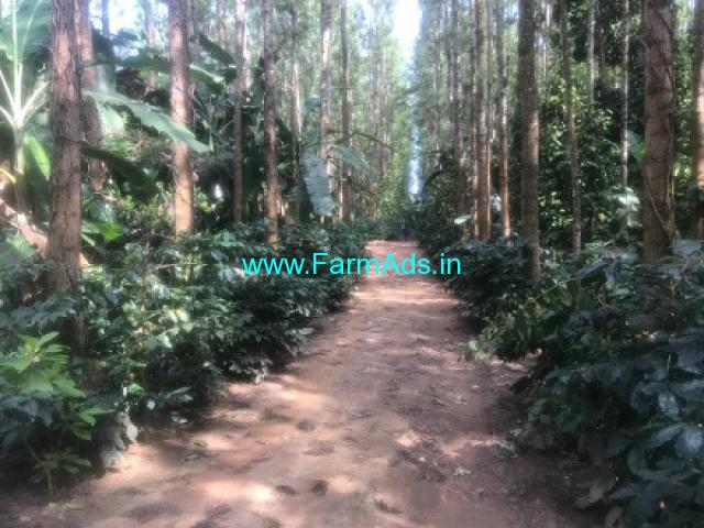 New Home stay with 2 Acres 6 guntas Land for sale in Chikamagalur