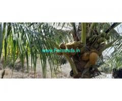 6 Acres Agricultural Land For Sale in Gundlupet