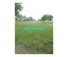 8.52 Acres Agricultural Land For Sale in Nannilam