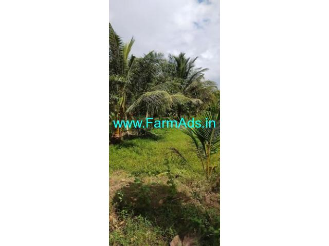 14 Acres Agricultural Land For Sale in Alangudi