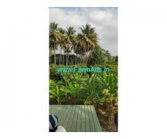 3.5 Acres Agricultural Land For Sale in Denkanikottai