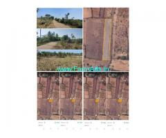1 acre 33 guntas land for sale Srinivaspur-Mulbagal Road