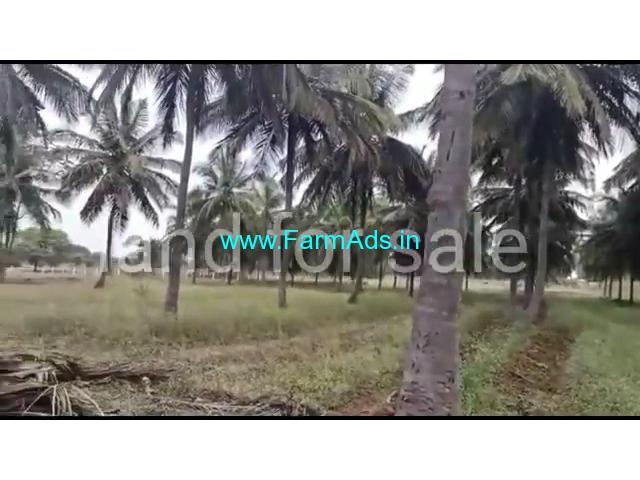 25 acre coconut farm for sale near Begur -  nanjangud and gundalpet