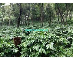 916 Acres agriculture Estate land for sale in Kasaragod