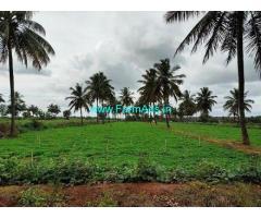 2 Acres farm land for sale in Srinivaspur. 75km from Hoskote