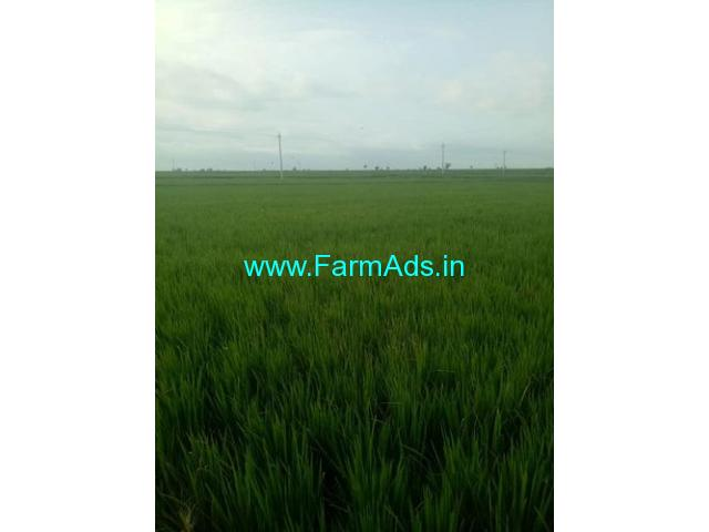 320 Acres farm land for sale , 17 km from Sindhanur