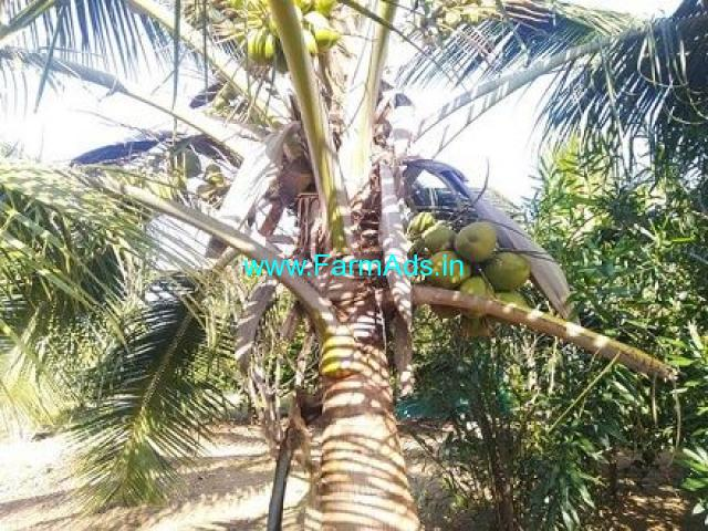 5 Acres agriculture land for sale in Sira