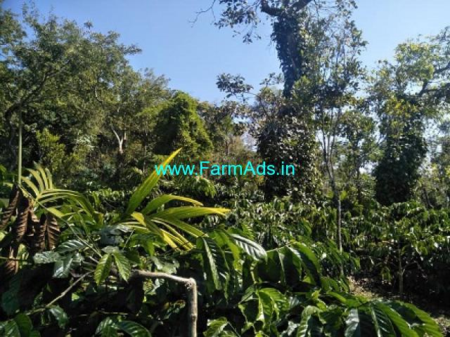 1 Acre Robusta Coffee plantation sale in Mudigere