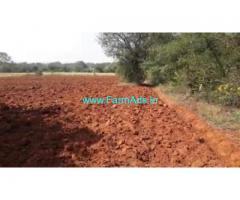 2.18 Acres Agricultural  Land For Sale In Terakanabi, Gundlupet