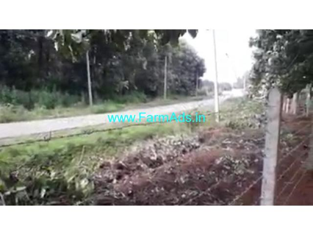 18 Acres Agricultural  Land For Sale In Gundlupet