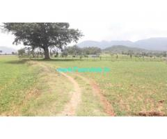 3 Acres Agricultural  Land For Sale In Hura