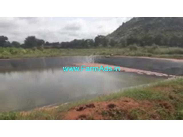 8 Acres farm land for sale in Gundlupet, 70 KMS from MYsore.