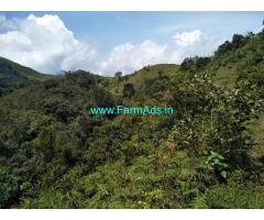 30 Acre land sale in Mudigere near Shishila hills