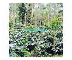 4.06 Acres Coffee estate for sale near Serai resorts