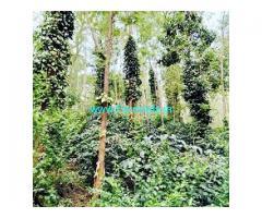 4.06 Acres Coffee estate for sale near Serai resorts