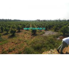 18 Acre high yielding pomegranate plantation Farm house Sale near Sira