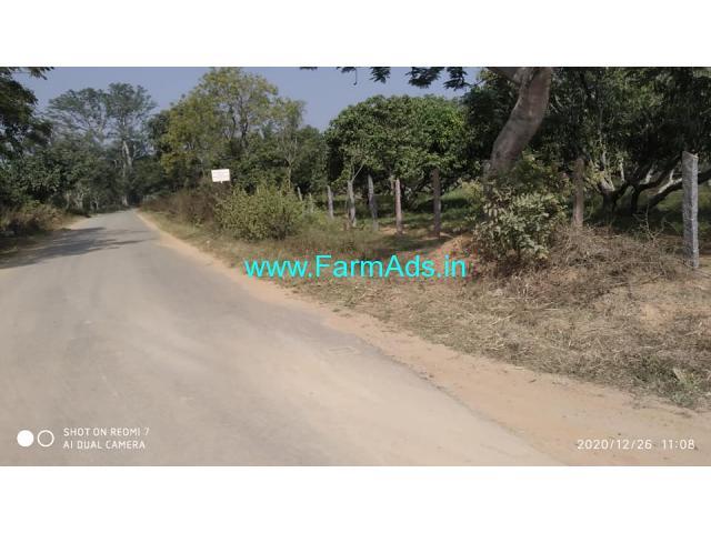 1.12 acre Mango Farm Land for Sale 11 kms from Ramanagara