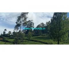 40 Cents Farm Property for sale in Kotagiri