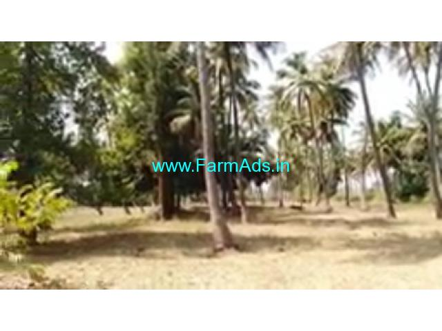 2 Acres 20 Gunta Farm Land For Sale In Channapatna