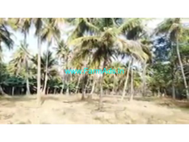 Kanva River Touch 27 Gunta Agriculture Land For Sale In Channapatna