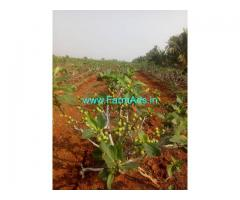 83 acres farm land for Sale near Somalapuram