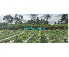 2 Acres Agriculture Land For Sale In T.Narasipura