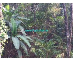 7 acre coffee and cardamom plantation for sale in Mudigere