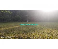 1.10 Acre Paddy field for sale in Chikmagalur