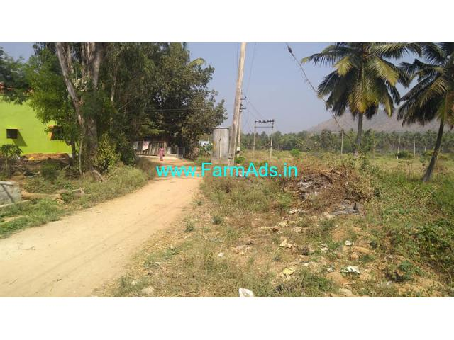 1.20 Acre Coconut Plantation for Sale near Halagur,75km from Bangalore