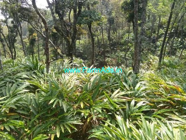 150 acres of cardamom estate for sale in Idukki district