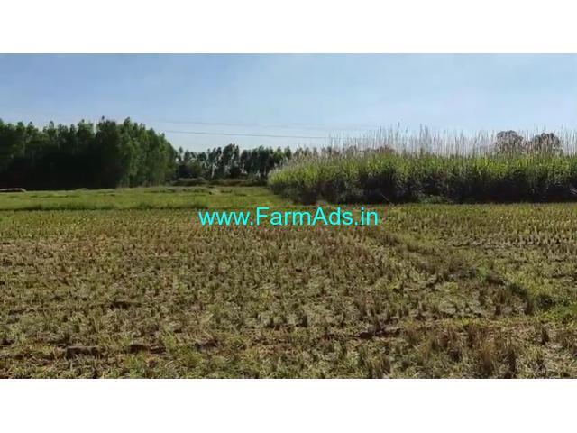3 Acre Farm Land for Sale Near Tirumakudalu Narasipura