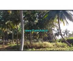 5 Acres 24 Gunta Coconut Farm Land For Sale In Mysuru