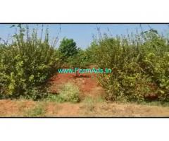 6 Acres Agriculture Land For Sale In Malavalli