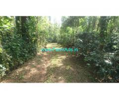 10 Acre Arabica Coffee Estate for Sale near Chikmagalur