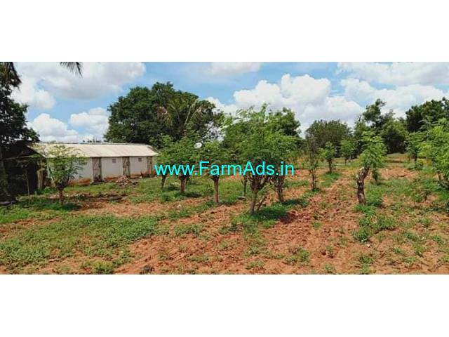 29 Acres Fully Developed Farm land near Hiriyur