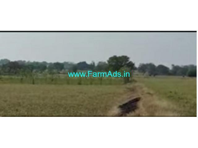 2 Acres 12 Gunta Farm Land For Sale In Hedathale