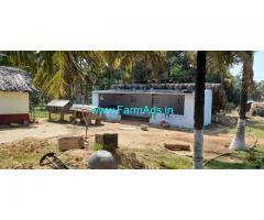 2 Acres Coconut Farm Sale Near By Govindapuram Trissur Road