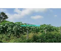 14 Acre Farm Land for Sale Near Mysore