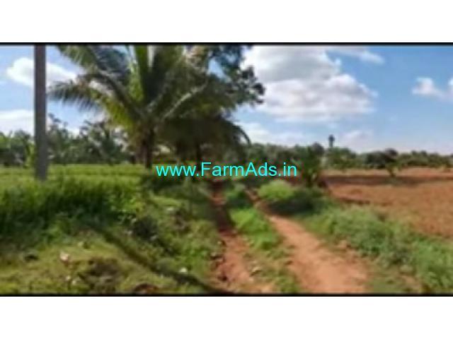 4 Acres 20 Gunta Farm Land For Sale In Narayanpura