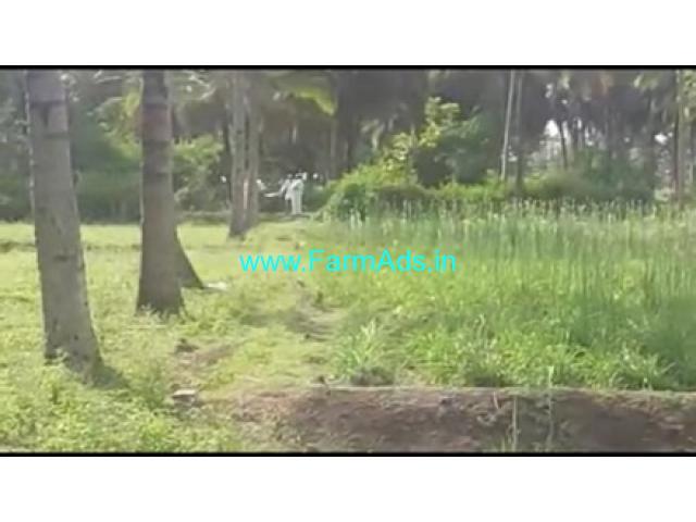 3 Acres 20 Gunta Agriculture Land For Sale In Kurahatti