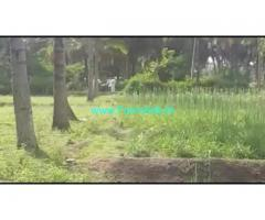 3 Acres 20 Gunta Agriculture Land For Sale In Kurahatti