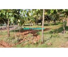 12 Acre Farm Land for Sale Near T Narasipura