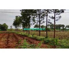 2.20 Acre Farm Land for Sale Near T Narasipura