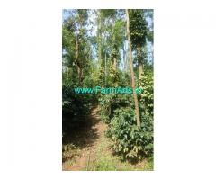 10 Acres Boundary Coffee estate for sale in Chikmagalur
